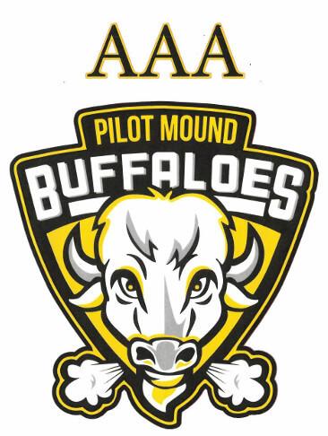 AAA Hockey